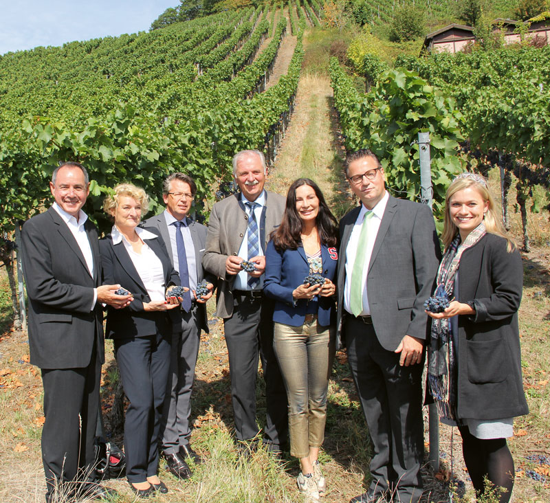 Wein-Technologie Management Studium
